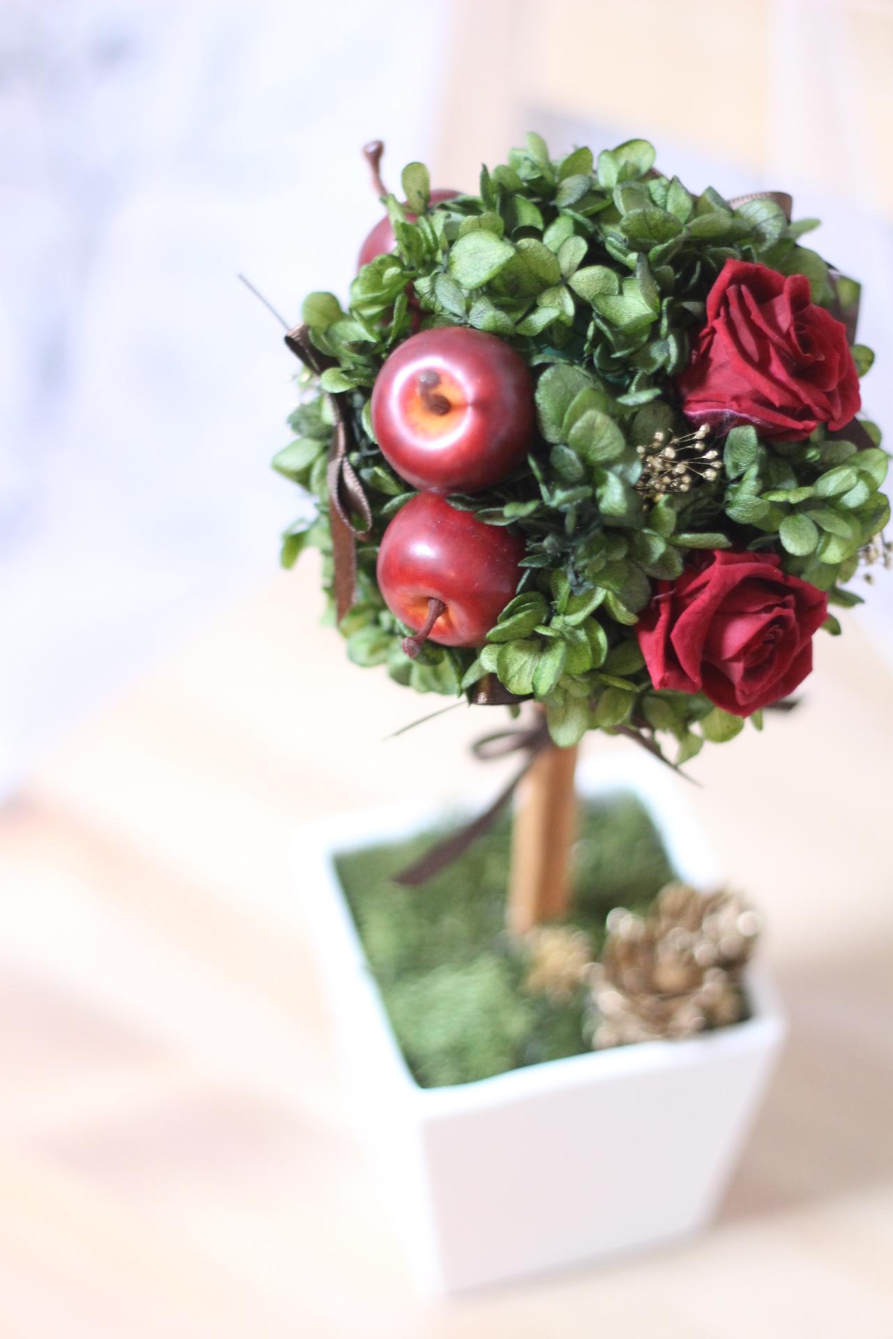 リンゴ&ローズのトピアリー♪【クリスマスカラー♪
