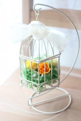 【フリー】鳥かごアレンジ