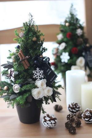 2017 クリスマスツリー